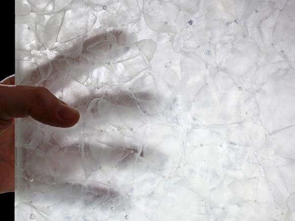 #37 - Magna Glaskeramik