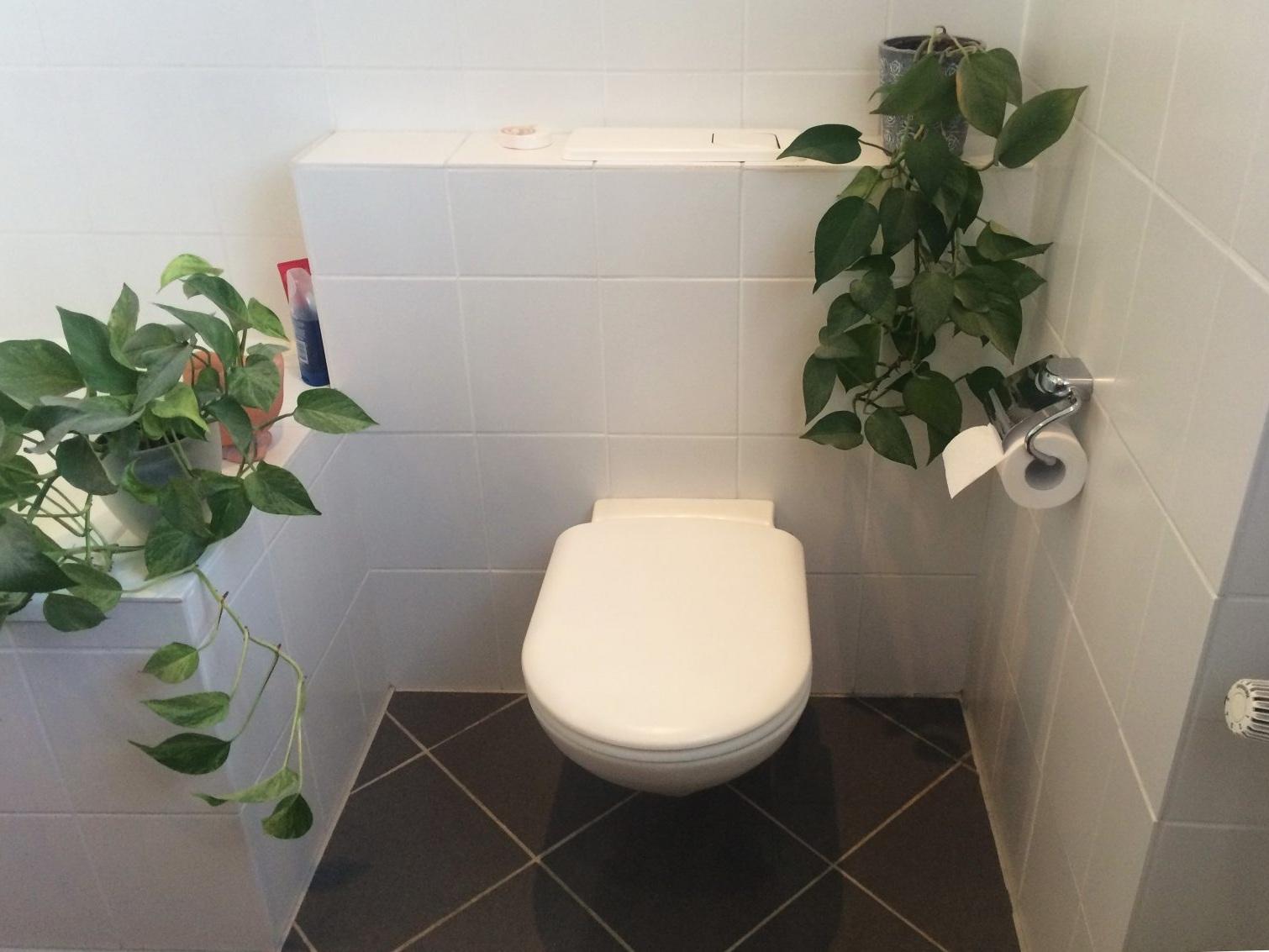 Badkonzepte für Duschbad - WC Bestand