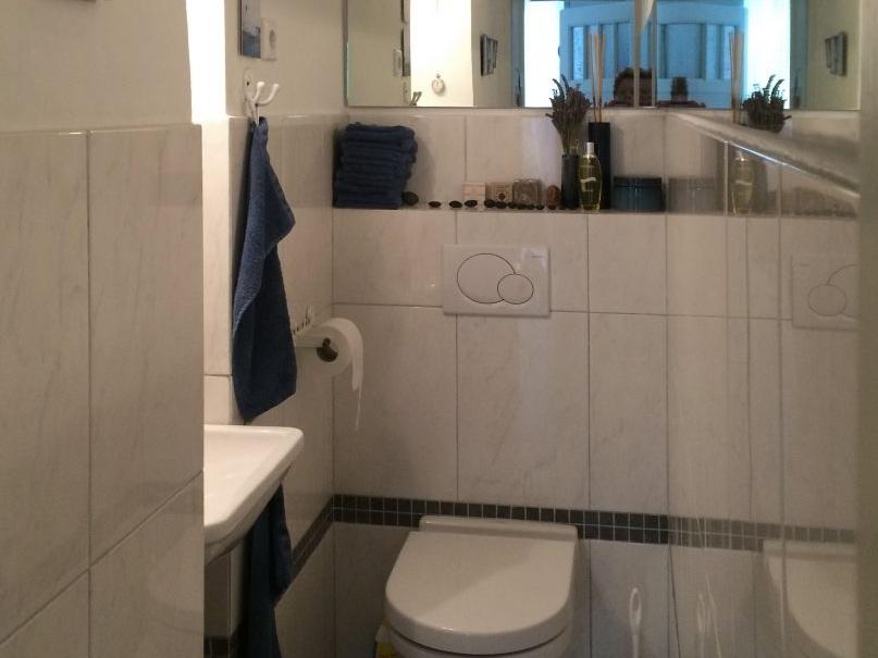 Seerosen im Spiegel - WC vorher